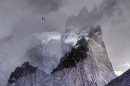 andean-condor-in-flight-over-mountain-peaks-the-andes-chile
